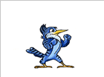 Caruso Blue Jays